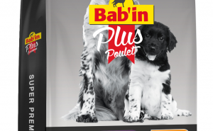 Обзор корма Бабин для собак от фирмы Кодико