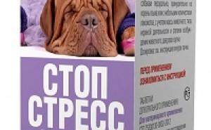 Как правильно применять Стоп Стресс при нервных расстройствах у собак?
