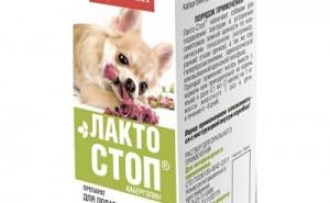 Является ли Лакто-стоп эффективным средством для лечения ложной беременности у собак