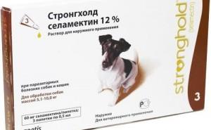 Правила применения капель от паразитов Стронгхолд для собак