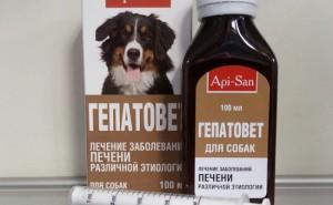Эффективен ли Гепатовет при проблемах с печенью у собак, и как его правильно применять?