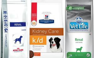 Правила выбора корма для собак с почечной недостаточностью