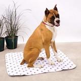 Что такое пеленка для животных и как приучить собаку ходить на нее в туалет?
