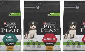 Все о корме Pro Plan для собак, а также стоит ли его давать своему питомцу