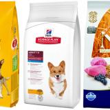 Правила выбора качественного сухого корма для собаки