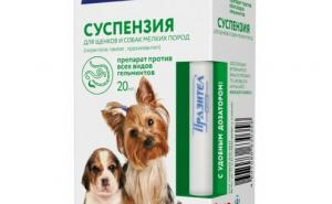 Инструкция по применению Прзатитела для собак, а также отзывы о препарате
