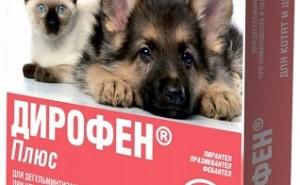 Как правильно применять Дирофен для дегельминтизации своей собаки?