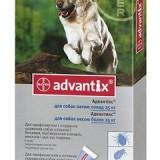 Для чего предназначены капли Адвантикс и как их правильно применять для собак?