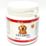 Инструкция по применению препарата Гелабон для собак, а также отзывы о нем