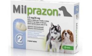 Правила применения Милпразона для собак при лечении глистов