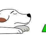 Причины, по которым собака может не есть сухой корм, и методы их устранения