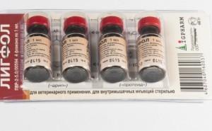 Подробное описание препарата Лигфол для собак и инструкция по его применению