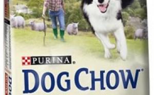 Что входит в состав корма Дог Чау и для каких собак он подходит?