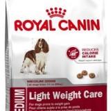 К какому классу относится корм Роял Канин, и стоит ли давать его своей собаке?