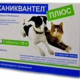 Как правильно применять Каниквантел для дегельминтизации своей собаки?
