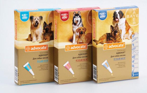 Капли Адвокат для собак: инструкция, цена и отзывы ветеринаров