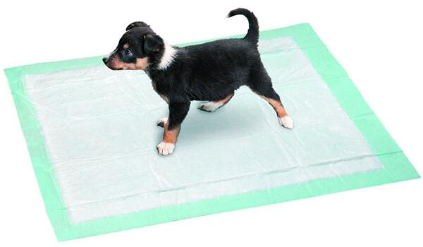 Что такое пеленка для собак?