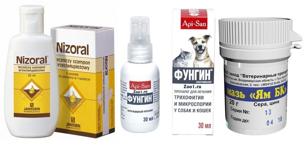 Препараты для лечения стригущего лишая у собак