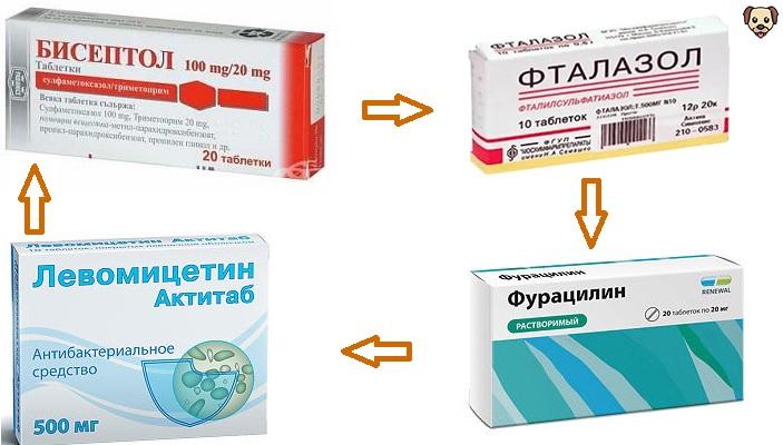 Лечение гастроэнтерита