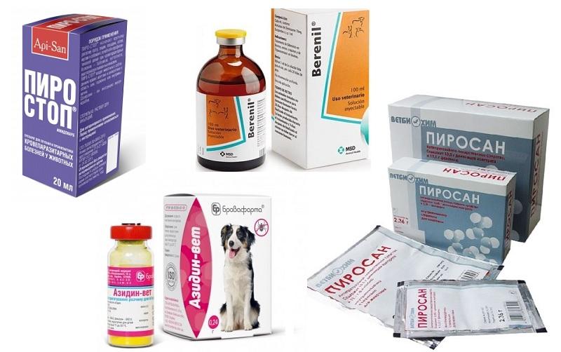 Препараты для лечения клещей у собак
