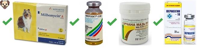 Препараты от демодекоза у собак