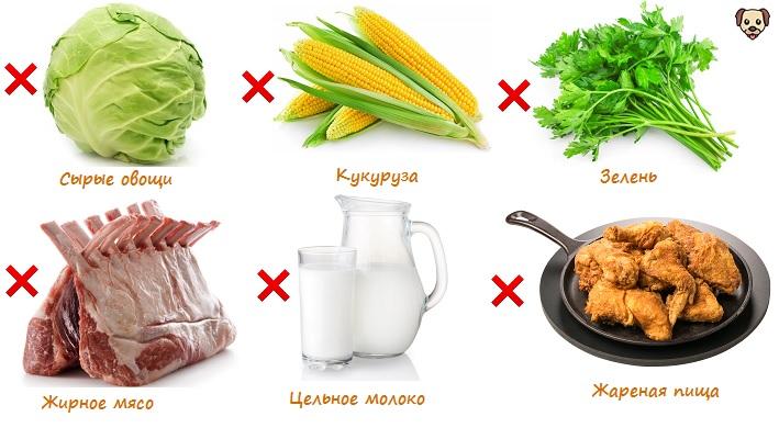 Что нельзя есть при больной поджелудочной железе?