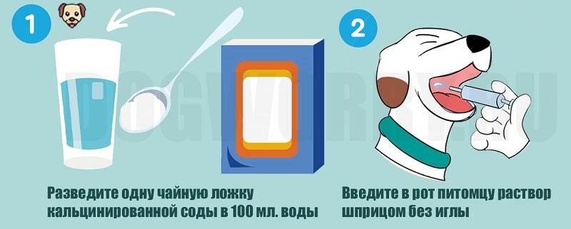 Попадание кислоты в желудок