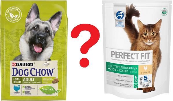 Разница между собачьим и кошачьим кормом