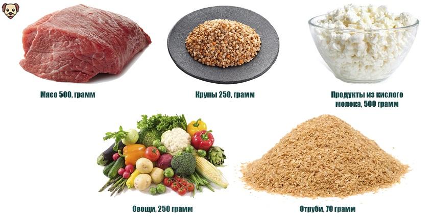 Чем кормить алабая в 5 месяцев?
