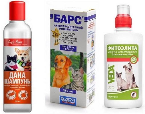 Виды шампуня от блох и клещей для собак