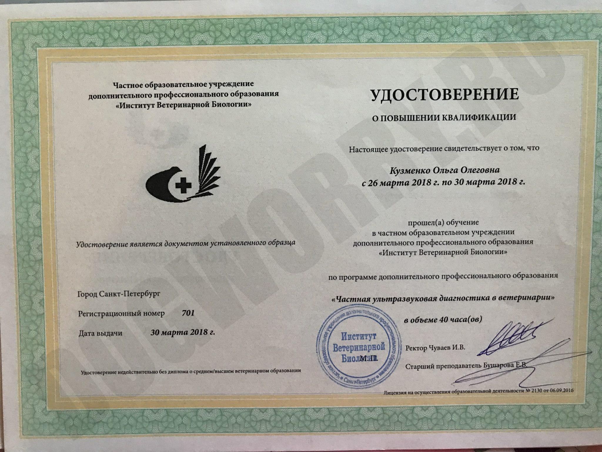 Сертификат автора №1