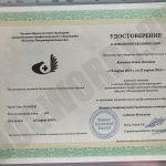 Сертификат автора №2