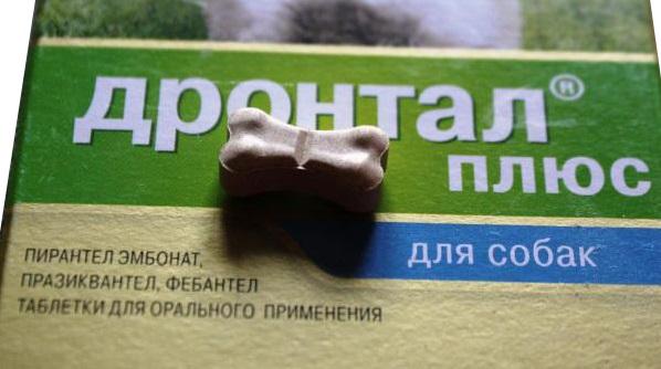 Инструкция по применению таблеток Дронтал для собак