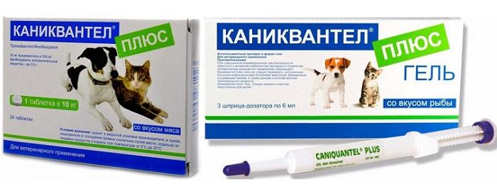 Форма выпуска антигельминтика для собак Каниквантел