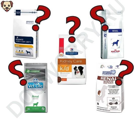 Какой корм для собак с почечной недостаточностью выбрать?