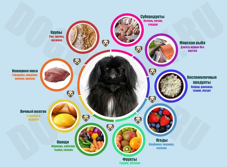 Натуральное питание для пекинеса