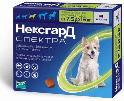 О препарате Нексгард Спектра для собак
