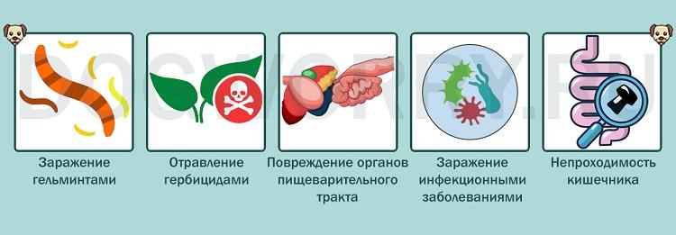 Почему данное поведение опасно для здоровья?