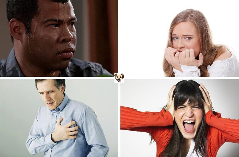 Симптомы кинофобии