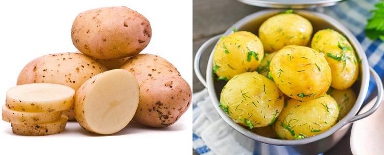 В каком виде можно давать собаке картофель?