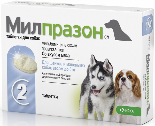 О препарате Милпразон для собак