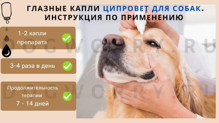 Ципровет - инструкция по применению глазных капель