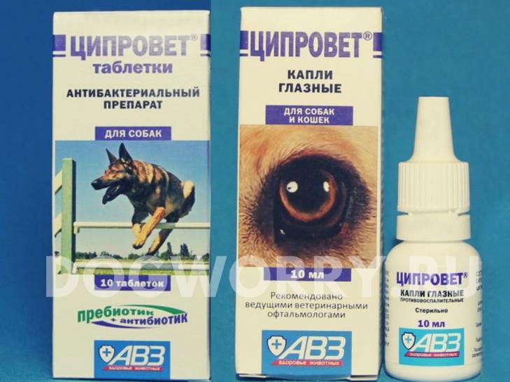 Лекарство для собак - Ципровет