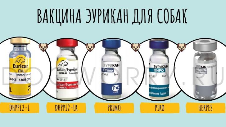 Разновидности вакцины эурикан