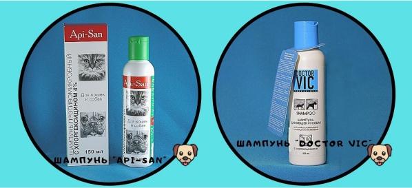 Популярные шампуни с хлоргексидином