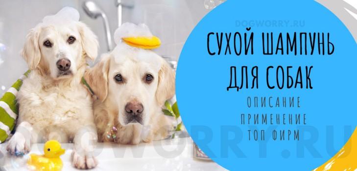 Сухой шампунь для собак- описание, применение