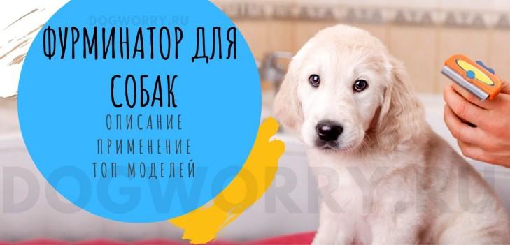 Фурминатор для собак - описание