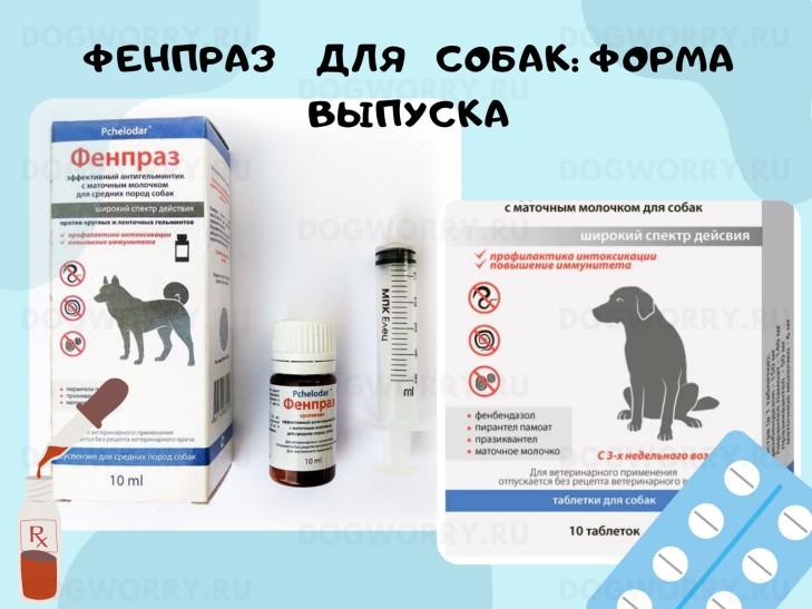 Форма выпуска фенпраз для собак