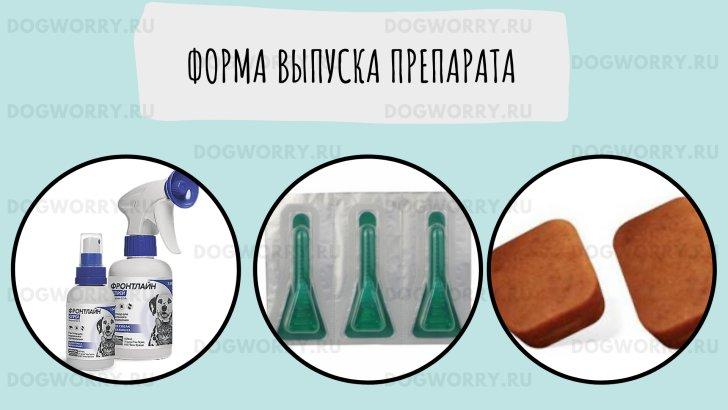 Фронтлайн спрей, капли и таблетки для собак
