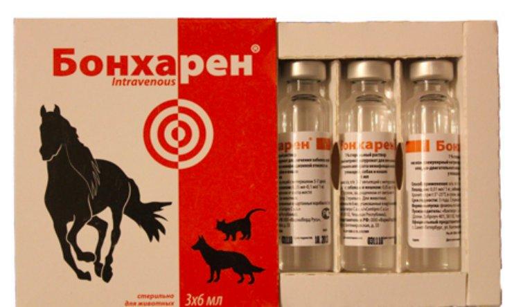 Бонхарен для собак в уколах